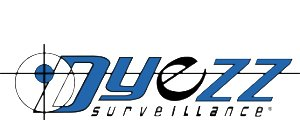 Dyezz Internet Marketing Case Studies