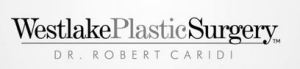 Westlake Plastic Surgery Internet Marketing Case Studies